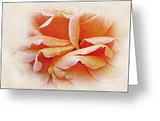 Peach Delight Greeting Card by Kaye Menner