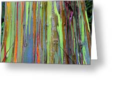 Peeling Bark- St Lucia. Greeting Card by Chester Williams