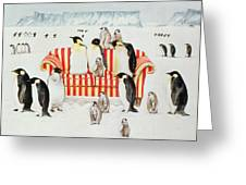 Penguins On A Red And White Sofa  Greeting Card by EB Watts