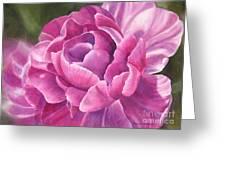 Peony Tulip Greeting Card by Sharon Freeman