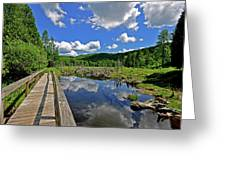 Perfect Day Greeting Card by Russell Todd