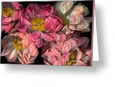 Petticoats Greeting Card by Christian Slanec