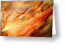 Phoenix Greeting Card by Michael Durst