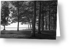 Picnic Table View-newport State Park Greeting Card by Stephen Mack