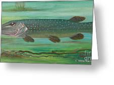 Pike Greeting Card by Anna Folkartanna Maciejewska-Dyba