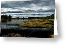 Pine Barrens Greeting Card by Louis Dallara