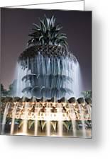 Pineapple Fountain Charleston Sc Greeting Card by Dustin K Ryan