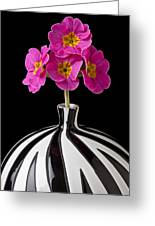 Pink English Primrose Greeting Card by Garry Gay