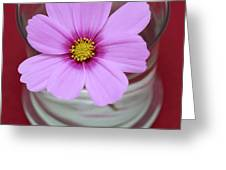 Pink Flower Greeting Card by Frank Tschakert