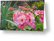 Pink Geraniums Greeting Card by Lea Novak