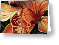 Pink Lily - Flower Painting Greeting Card by Linda Apple