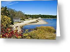 Pleasant Bay Greeting Card by John Greim