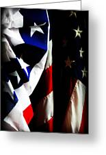 Pledge To The Usa Greeting Card by Susie Weaver