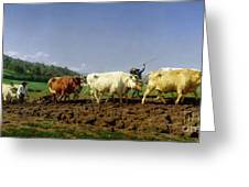 Ploughing In Nivernais Greeting Card by Rosa Bonheur
