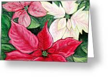 Poinsettia Pastel Greeting Card by Nancy Mueller