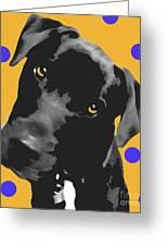 Polka Dot Greeting Card by Amanda Barcon