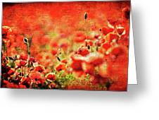 Poppies Greeting Card by Meirion Matthias