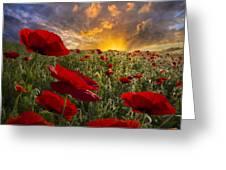 Poppy Field Greeting Card by Debra and Dave Vanderlaan