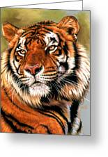 Power And Grace Greeting Card by Barbara Keith