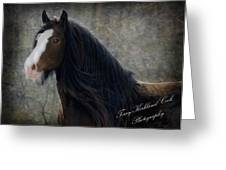 Powerful Paul Greeting Card by Terry Kirkland Cook