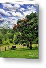 Pretty Countryside Greeting Card by Kaye Menner