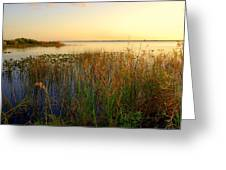 Pretty Evening At The Lake Greeting Card by Susanne Van Hulst