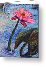 Pretty Pink In The Pond Greeting Card by Emily Michaud