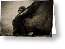 Protection Greeting Card by Animus  Photography