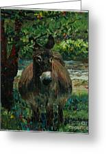 Provence Donkey Greeting Card by Nadine Rippelmeyer