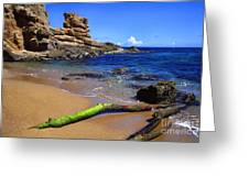 Puerto Rico Toro Point Greeting Card by Thomas R Fletcher