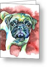 Pug In Red Greeting Card by Christy  Freeman