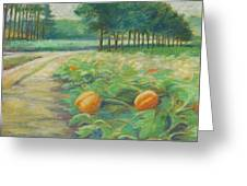 Pumpkin Patch Greeting Card by Leslie Alfred McGrath