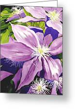 Purple Clematis In Sunlight Greeting Card by Janis Grau