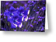 Purple Florwer Abstract Greeting Card by Marjorie Imbeau