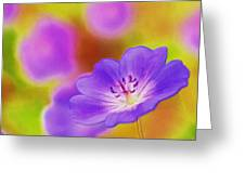 Purple Geranium Greeting Card by Lanjee Chee