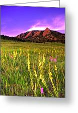 Purple Skies And Wildflowers Greeting Card by Scott Mahon