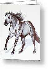 Quarter Horse At Lope Greeting Card by Cheryl Poland