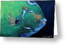 Queen Angelfish Greeting Card by Barbara Teller