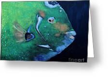 Queen Angelfish Greeting Card by Barbara Teller