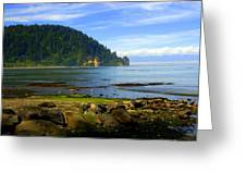 Quiet Bay Greeting Card by Marty Koch