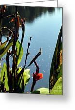 Quiet Waters Greeting Card by Gerlinde Keating - Keating Associates Inc