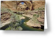 Rainbow Bridge Upstream Greeting Card by Jerry McElroy