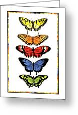 Rainbow Butterflies Greeting Card by Lucy Arnold