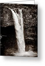 Rainbow Falls 2 - Sepia Greeting Card by Christopher Holmes