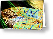Rattler Greeting Card by Peter  McIntosh