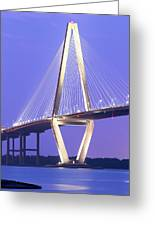 Ravenel Lights Greeting Card by Drew Castelhano