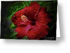 Reaching Out Greeting Card by Arnie Goldstein