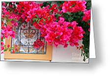 Red Bougainvilleas Greeting Card by Gaspar Avila