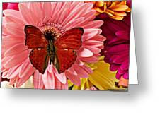 Red butterfly on bunch of flowers Greeting Card by Garry Gay
