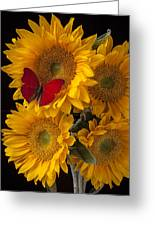 Red Butterfly With Four Sunflowers Greeting Card by Garry Gay